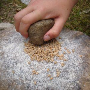 Survival mąka